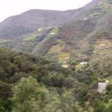 5-scenery2