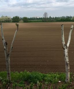 fin-farmland