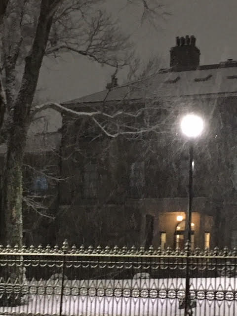 snow-lt-gov